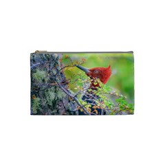 Woodpecker At Forest Pecking Tree, Patagonia, Argentina Cosmetic Bag (small)  by dflcprints