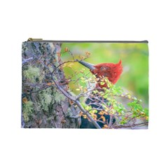 Woodpecker At Forest Pecking Tree, Patagonia, Argentina Cosmetic Bag (large)  by dflcprints