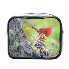 Woodpecker At Forest Pecking Tree, Patagonia, Argentina Mini Toiletries Bags by dflcprints