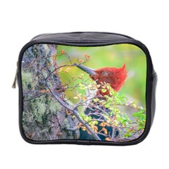 Woodpecker At Forest Pecking Tree, Patagonia, Argentina Mini Toiletries Bag 2 Side by dflcprints