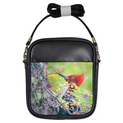 Woodpecker At Forest Pecking Tree, Patagonia, Argentina Girls Sling Bags by dflcprints