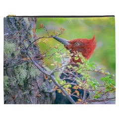Woodpecker At Forest Pecking Tree, Patagonia, Argentina Cosmetic Bag (xxxl)  by dflcprints
