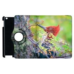 Woodpecker At Forest Pecking Tree, Patagonia, Argentina Apple Ipad 3/4 Flip 360 Case by dflcprints