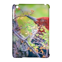 Woodpecker At Forest Pecking Tree, Patagonia, Argentina Apple Ipad Mini Hardshell Case (compatible With Smart Cover) by dflcprints