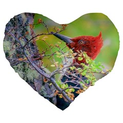 Woodpecker At Forest Pecking Tree, Patagonia, Argentina Large 19  Premium Heart Shape Cushions by dflcprints