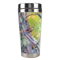 Woodpecker At Forest Pecking Tree, Patagonia, Argentina Stainless Steel Travel Tumblers by dflcprints