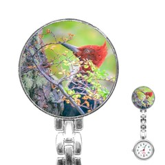 Woodpecker At Forest Pecking Tree, Patagonia, Argentina Stainless Steel Nurses Watch by dflcprints