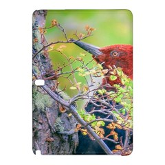 Woodpecker At Forest Pecking Tree, Patagonia, Argentina Samsung Galaxy Tab Pro 12 2 Hardshell Case by dflcprints