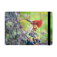 Woodpecker At Forest Pecking Tree, Patagonia, Argentina Ipad Mini 2 Flip Cases by dflcprints