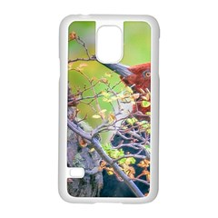 Woodpecker At Forest Pecking Tree, Patagonia, Argentina Samsung Galaxy S5 Case (white) by dflcprints