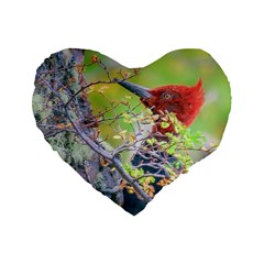 Woodpecker At Forest Pecking Tree, Patagonia, Argentina Standard 16  Premium Flano Heart Shape Cushions by dflcprints