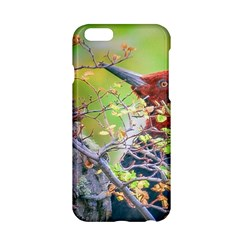 Woodpecker At Forest Pecking Tree, Patagonia, Argentina Apple Iphone 6/6s Hardshell Case by dflcprints