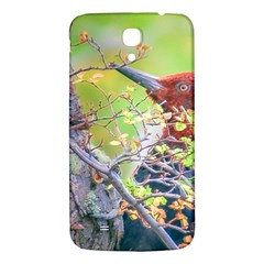 Woodpecker At Forest Pecking Tree, Patagonia, Argentina Samsung Galaxy Mega I9200 Hardshell Back Case by dflcprints