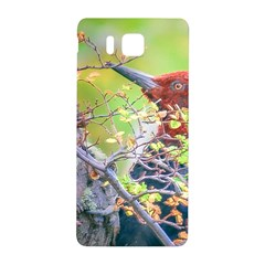 Woodpecker At Forest Pecking Tree, Patagonia, Argentina Samsung Galaxy Alpha Hardshell Back Case by dflcprints