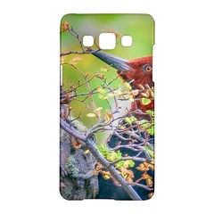 Woodpecker At Forest Pecking Tree, Patagonia, Argentina Samsung Galaxy A5 Hardshell Case  by dflcprints