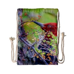 Woodpecker At Forest Pecking Tree, Patagonia, Argentina Drawstring Bag (small) by dflcprints