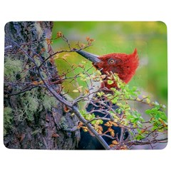 Woodpecker At Forest Pecking Tree, Patagonia, Argentina Jigsaw Puzzle Photo Stand (rectangular) by dflcprints