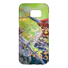 Woodpecker At Forest Pecking Tree, Patagonia, Argentina Samsung Galaxy S7 Edge Hardshell Case by dflcprints