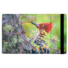 Woodpecker At Forest Pecking Tree, Patagonia, Argentina Apple Ipad Pro 9 7   Flip Case by dflcprints