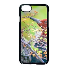 Woodpecker At Forest Pecking Tree, Patagonia, Argentina Apple Iphone 7 Seamless Case (black) by dflcprints