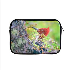 Woodpecker At Forest Pecking Tree, Patagonia, Argentina Apple Macbook Pro 15  Zipper Case by dflcprints