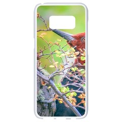 Woodpecker At Forest Pecking Tree, Patagonia, Argentina Samsung Galaxy S8 White Seamless Case by dflcprints
