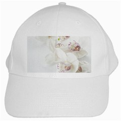 Orchids Flowers White Background White Cap
