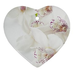 Orchids Flowers White Background Ornament (heart) by Nexatart
