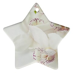 Orchids Flowers White Background Ornament (star)