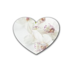Orchids Flowers White Background Rubber Coaster (heart)  by Nexatart