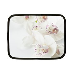 Orchids Flowers White Background Netbook Case (small)  by Nexatart
