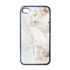 Orchids Flowers White Background Apple Iphone 4 Case (black)