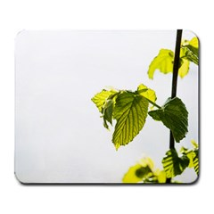 Leaves Nature Large Mousepads by Nexatart