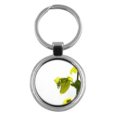 Leaves Nature Key Chains (round)  by Nexatart