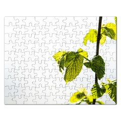 Leaves Nature Rectangular Jigsaw Puzzl by Nexatart