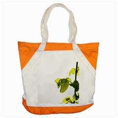 Leaves Nature Accent Tote Bag by Nexatart