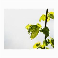Leaves Nature Small Glasses Cloth (2 Side)