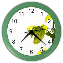 Leaves Nature Color Wall Clocks by Nexatart