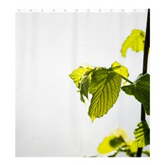 Leaves Nature Shower Curtain 66  X 72  (large)  by Nexatart