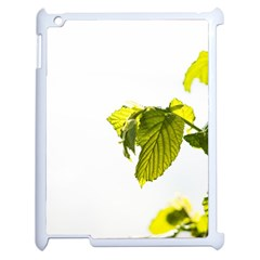 Leaves Nature Apple Ipad 2 Case (white) by Nexatart