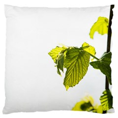 Leaves Nature Large Cushion Case (two Sides)