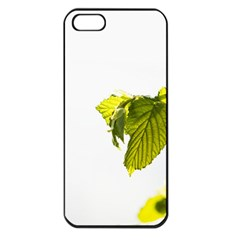 Leaves Nature Apple Iphone 5 Seamless Case (black)