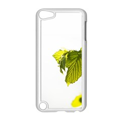Leaves Nature Apple Ipod Touch 5 Case (white) by Nexatart