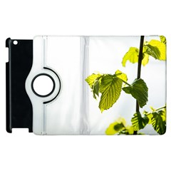 Leaves Nature Apple Ipad 2 Flip 360 Case by Nexatart