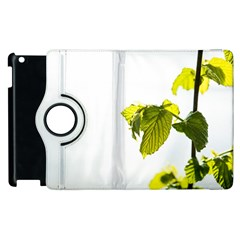 Leaves Nature Apple Ipad 3/4 Flip 360 Case by Nexatart