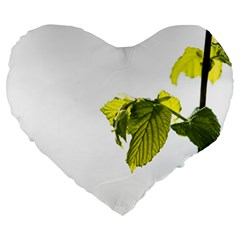 Leaves Nature Large 19  Premium Heart Shape Cushions