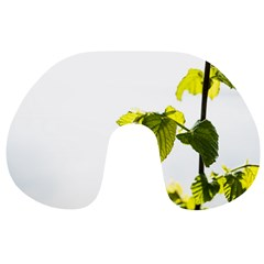 Leaves Nature Travel Neck Pillows
