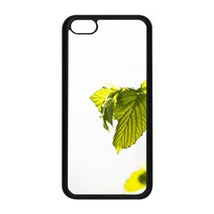 Leaves Nature Apple Iphone 5c Seamless Case (black)