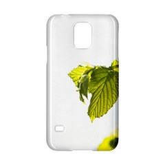 Leaves Nature Samsung Galaxy S5 Hardshell Case