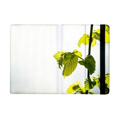 Leaves Nature Ipad Mini 2 Flip Cases by Nexatart